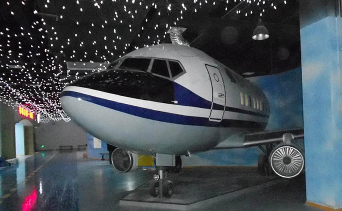 理塘安全体验民航飞机仿真模拟