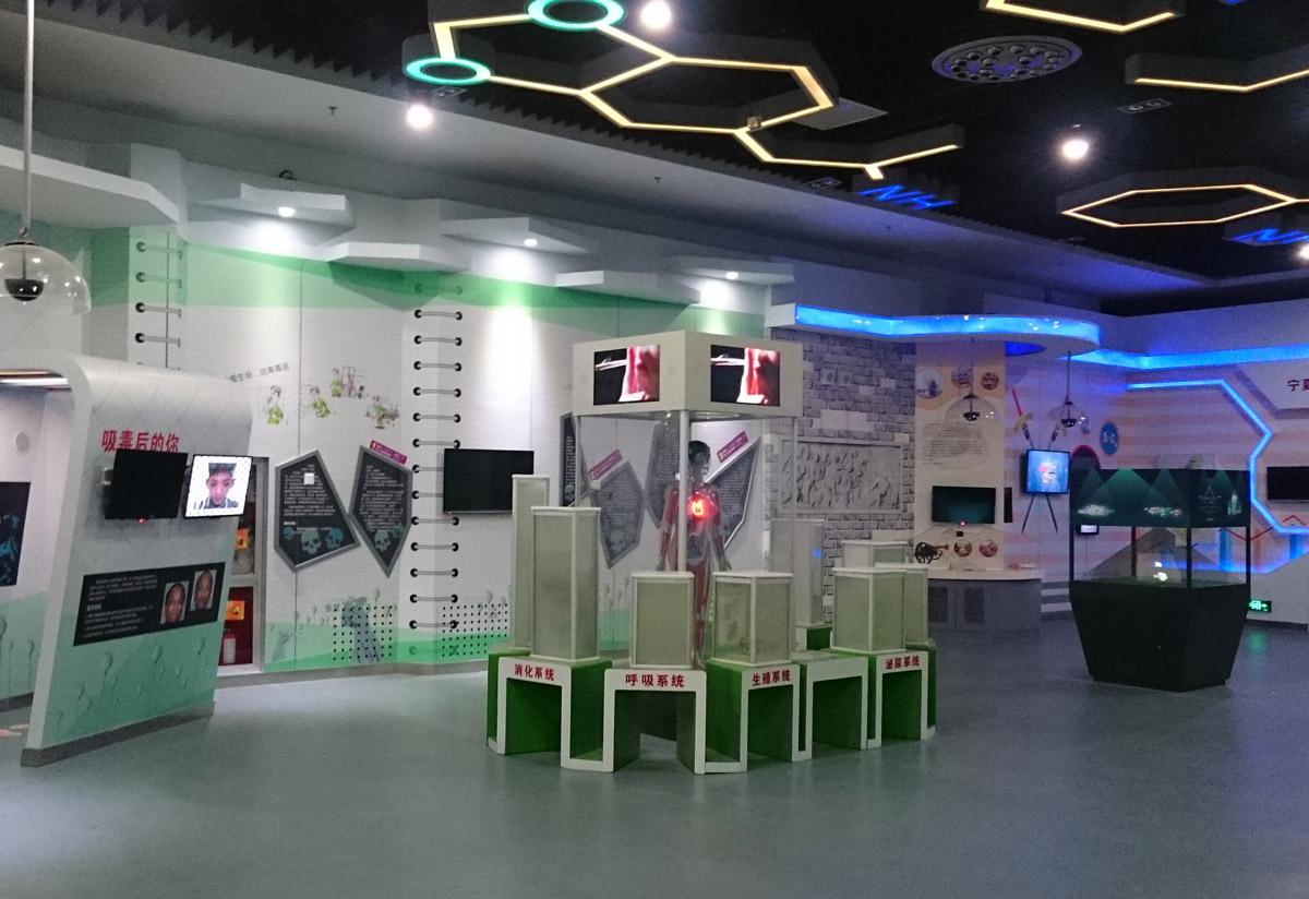 景县安全体验LED互动吸毒血液循环模型